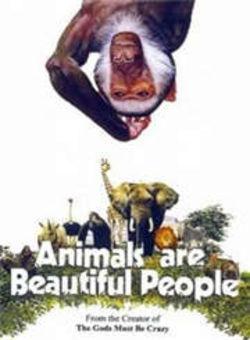 可爱的动物海报